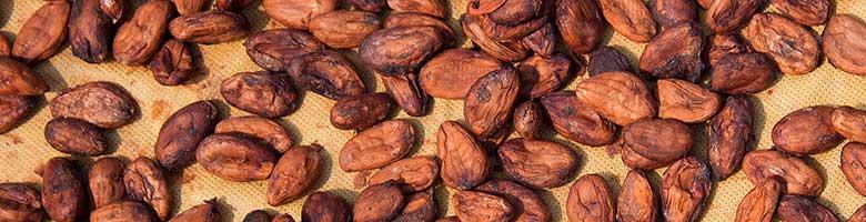 Cacao bevat 1500 mg kalium per 100 gram