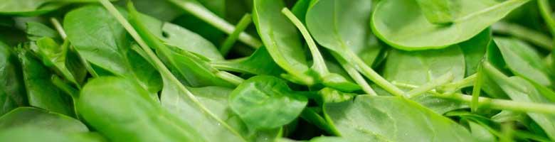 Spinazi bevat 45 mg magnesium per 100 gram